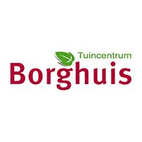Borghuis logo